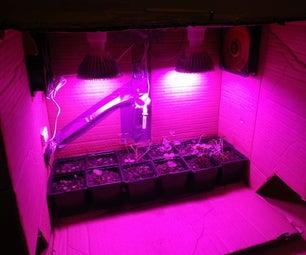 Small Grow & Germination Box in Cardbord Box