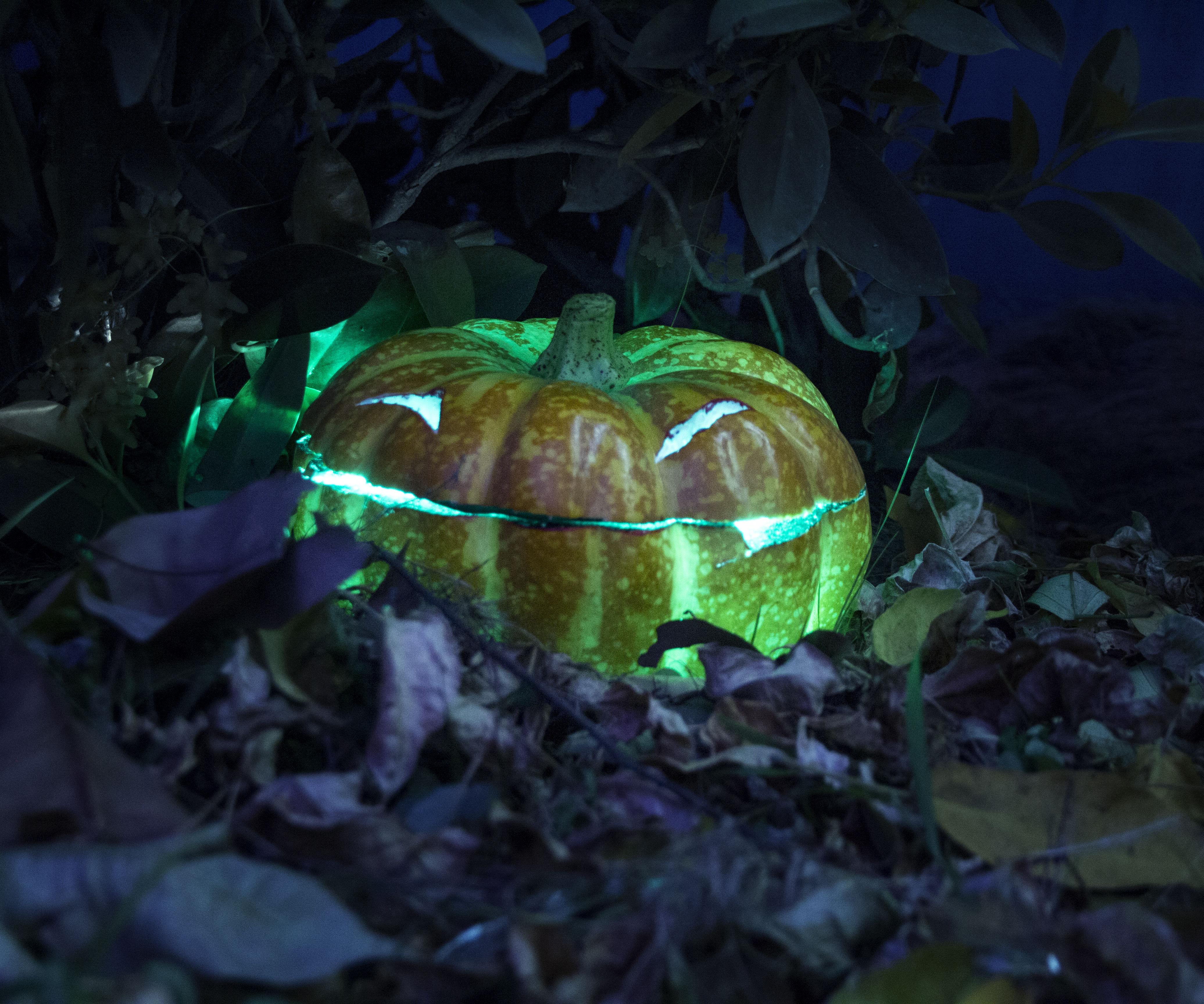 How to Make a Screaming Halloween Pumpkin (Jack-o'-lantern)