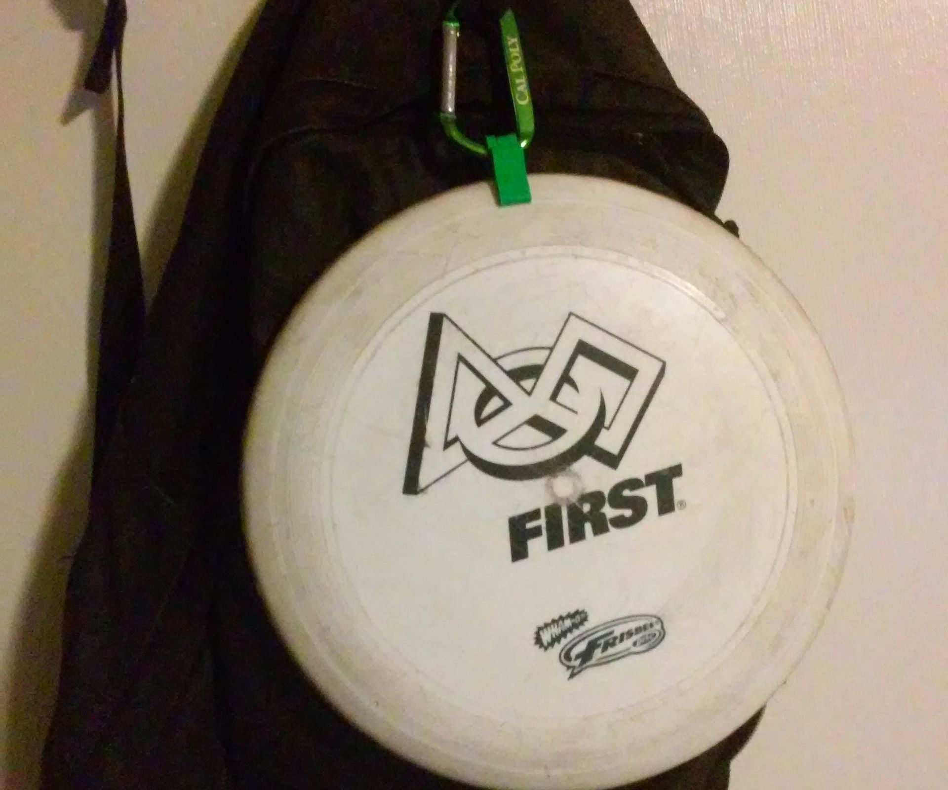 Frisbee Carabiner Clip