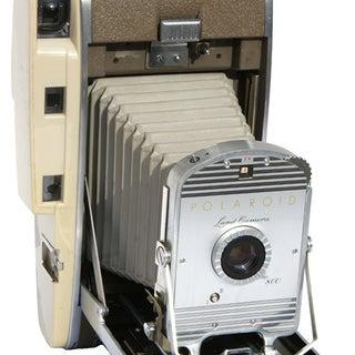 polaroid800lg.jpg