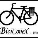 biciconex.com