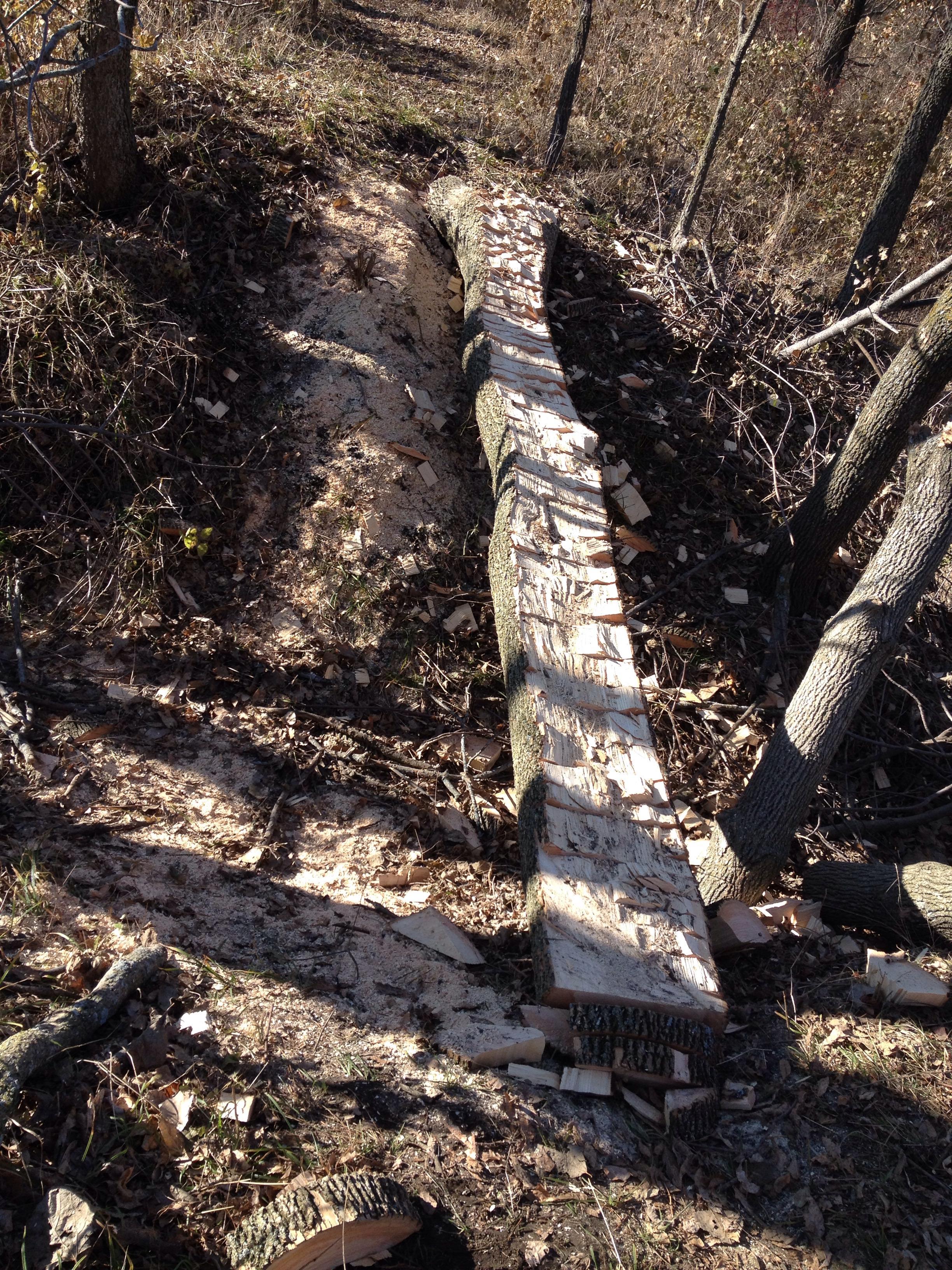 How To Make A Mountain Bike Bridge