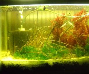 Inexpensive Locally Based Saltwater Aquarium
