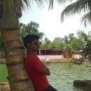 satyasankar09