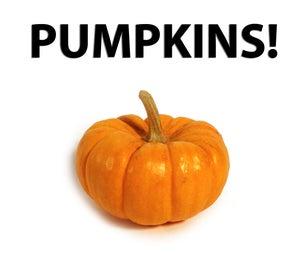 The Weekly Challenge: Pumpkins