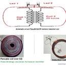 Wireless Power Transfer Radio Waves