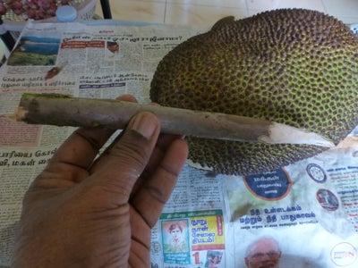 Cut the Fruit Into Halves