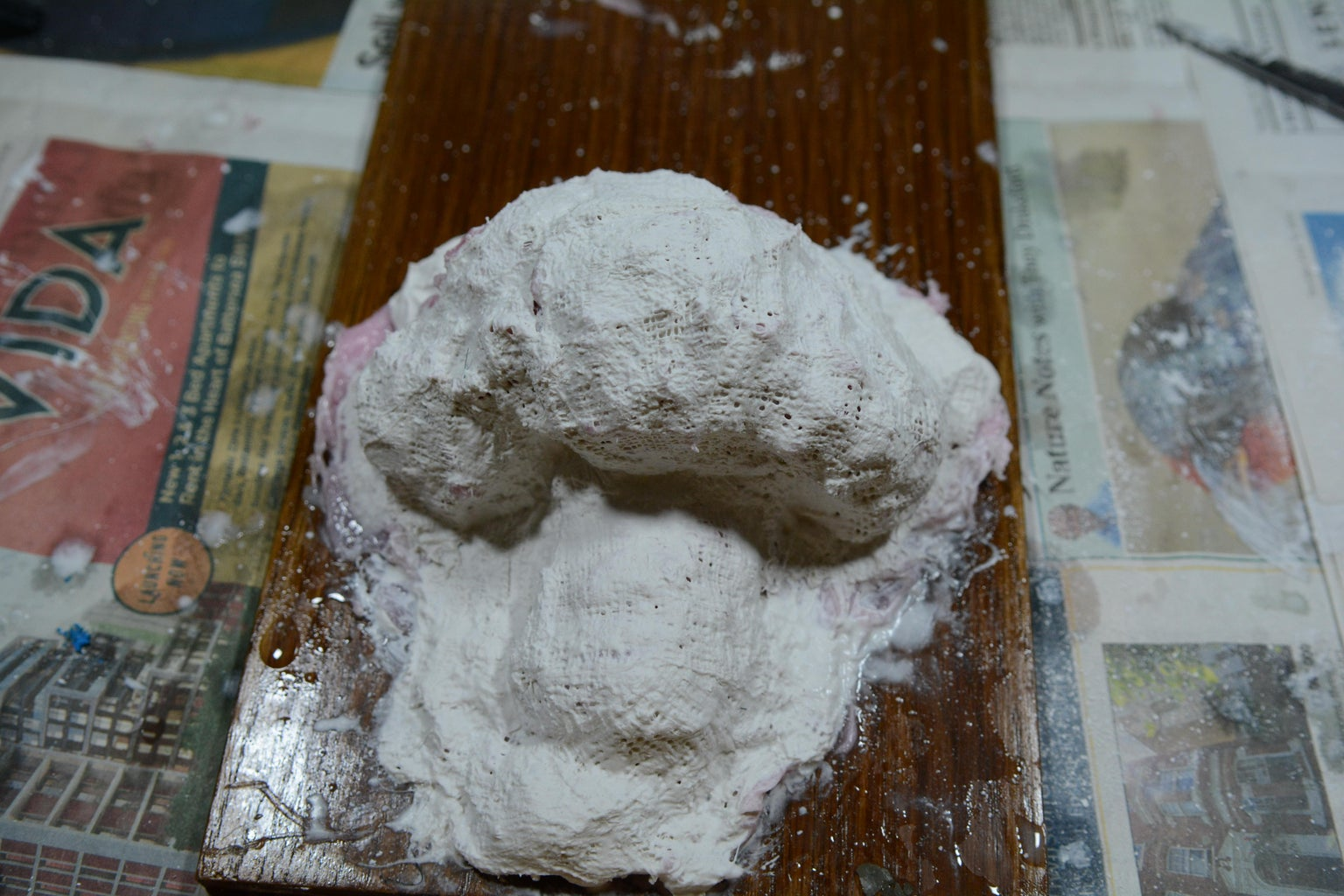 Plaster/Cement Casing