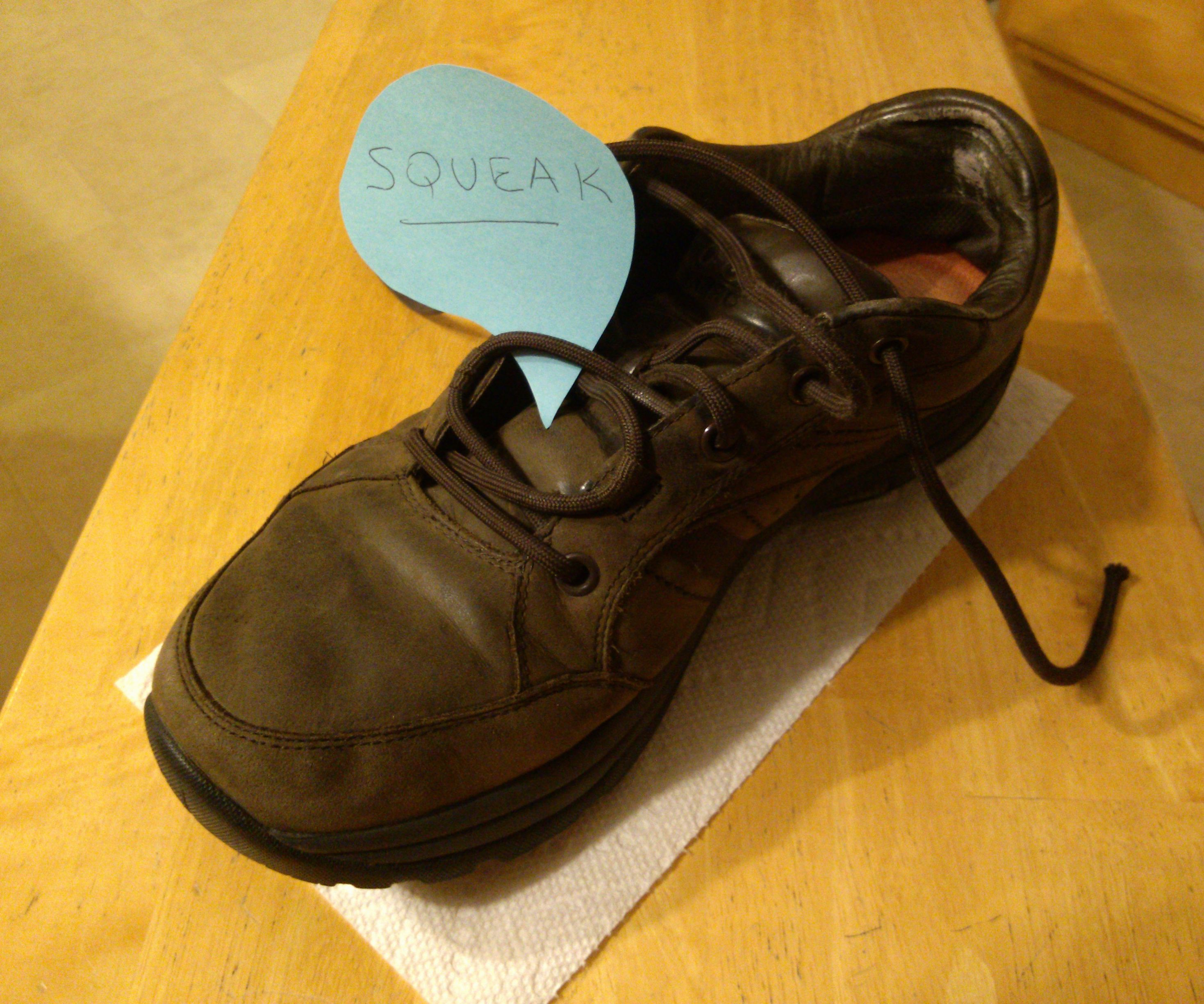 Fixing A Squeaky Sneaker Air Bladder