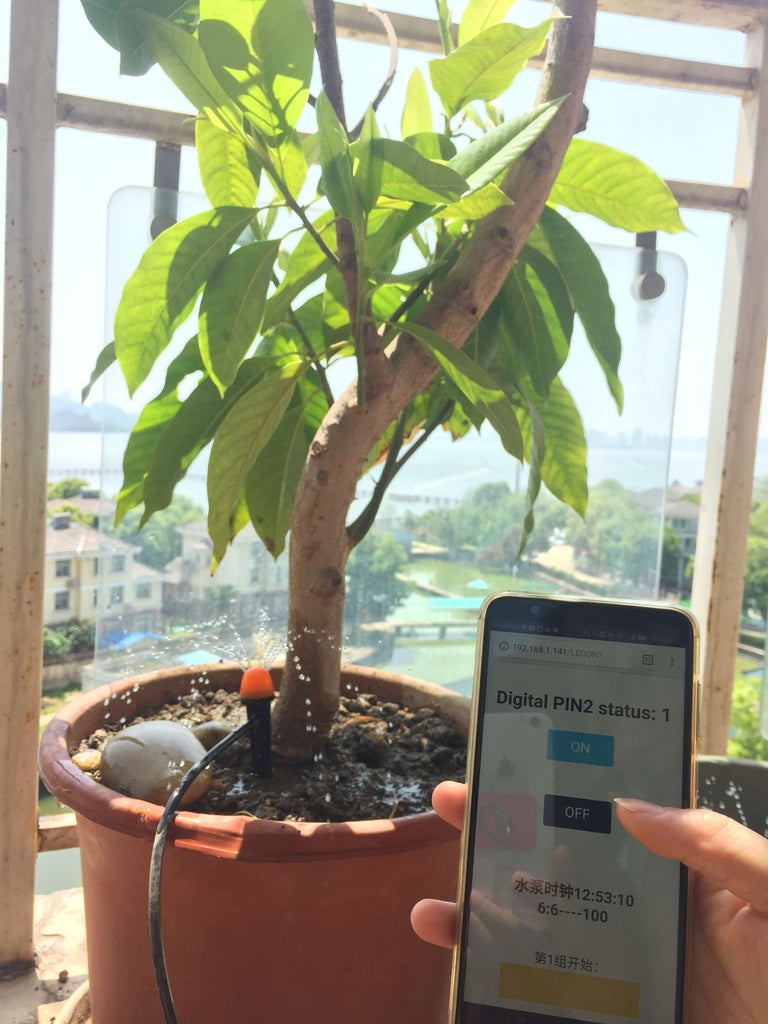 DIY Wireless Automatic Plant Watering System Without Internet Access Requirement