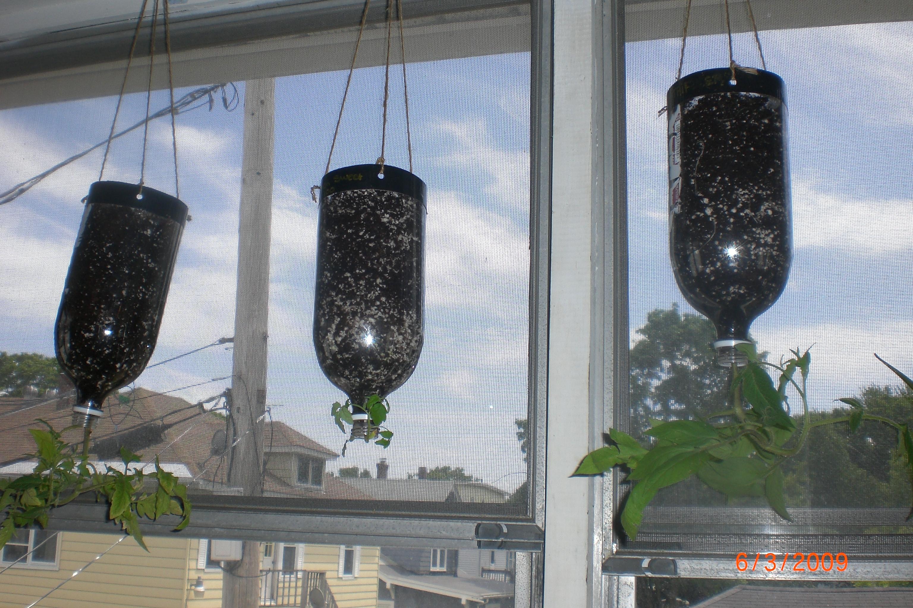 Slow soaking hanging soda bottle planter