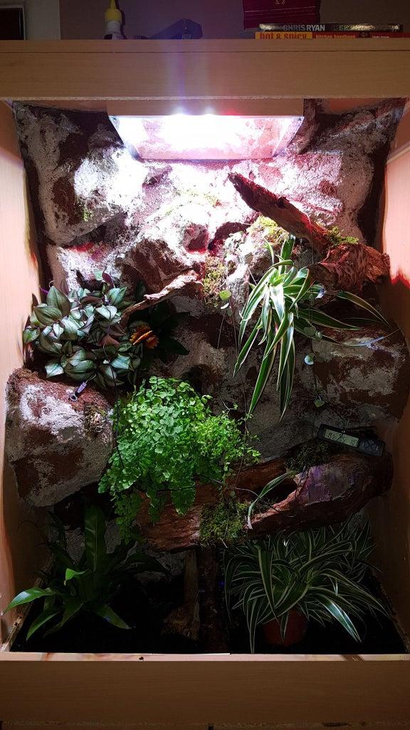 Convert Old Cupboard Into Amazing Vivarium