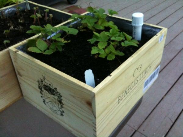 Wine Box Wicking Planter Boxes