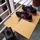 Shoe Sanitizing System (automated)