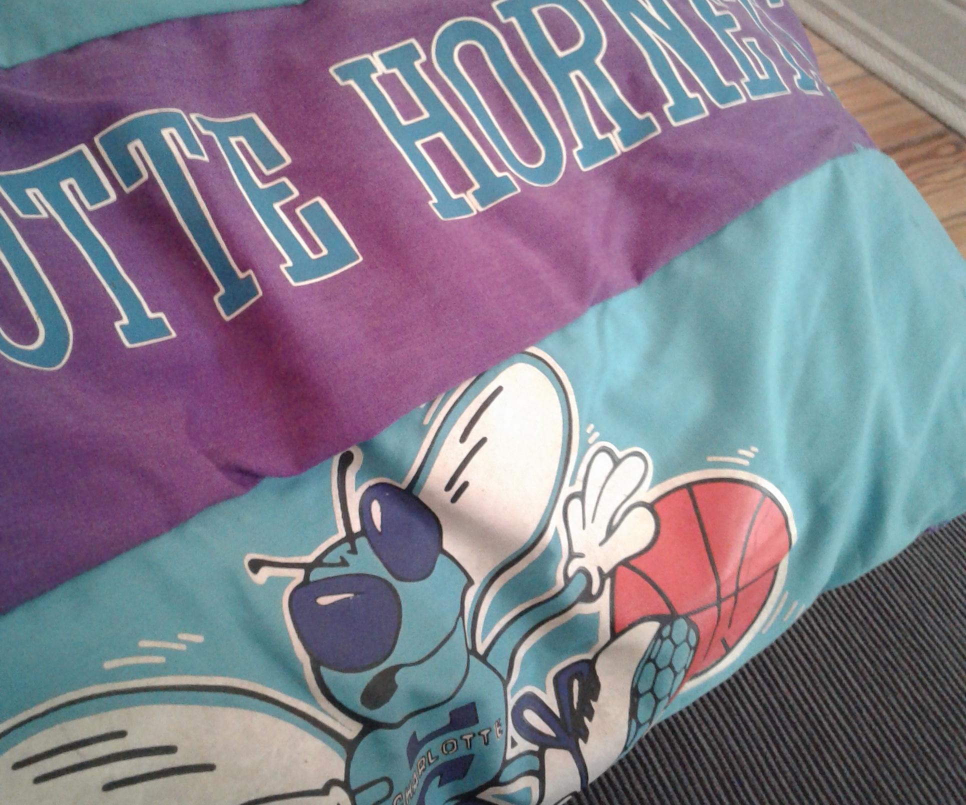 NBA Pillow Cover