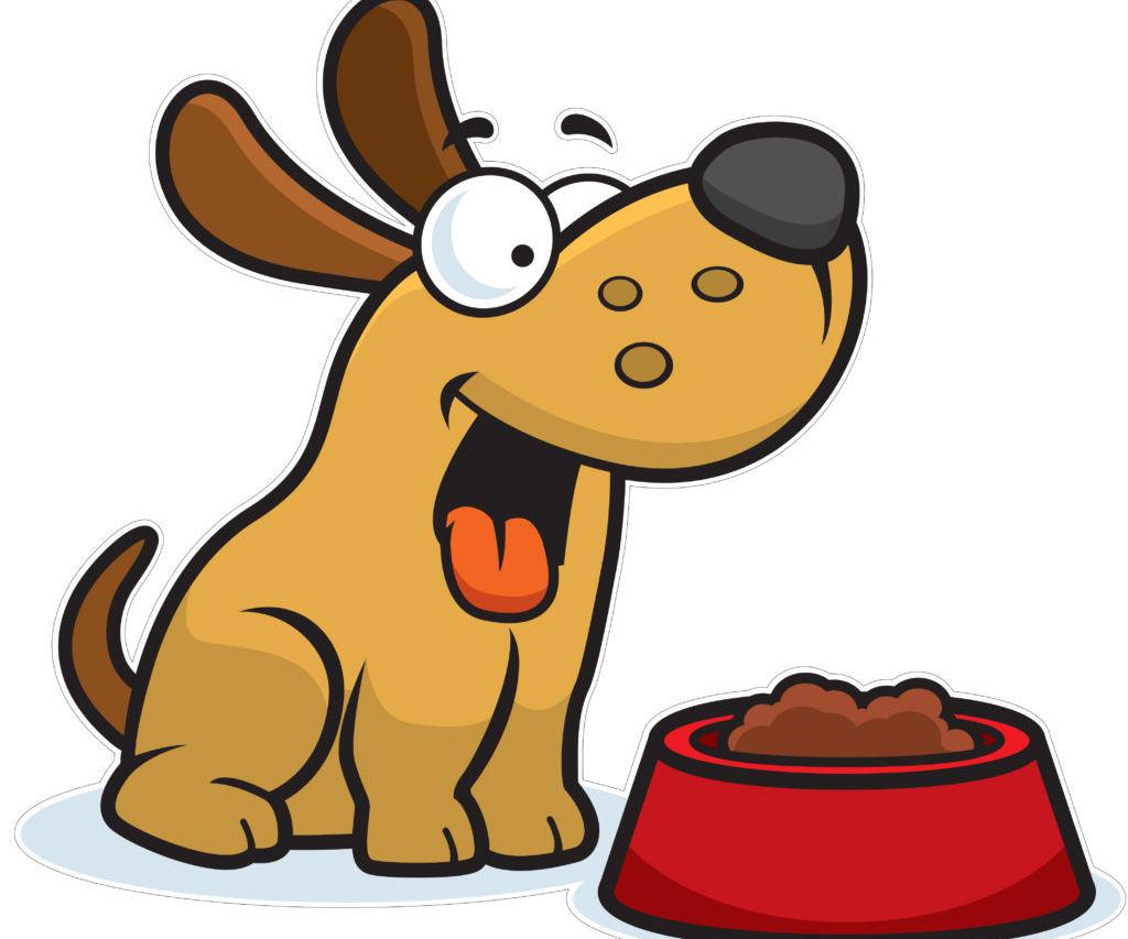 Sensor-Based Pet Food Dispneser