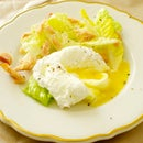 Poached Eggs + Candied Salmon