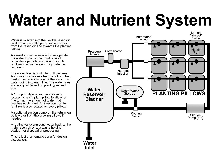 Water, Light, Nutrients