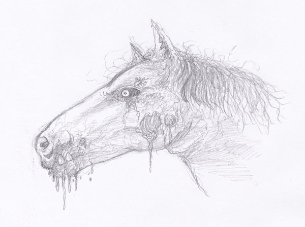 Drawing a Zombie Horse Head