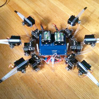 Wireless Hexapod Robot