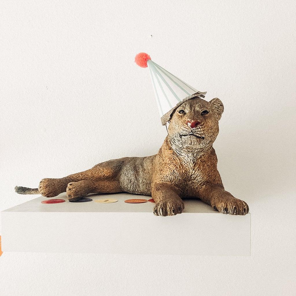 PROJECT 1-Pom-Pom Party Hat