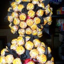 Potted Lollypop Topiary trees