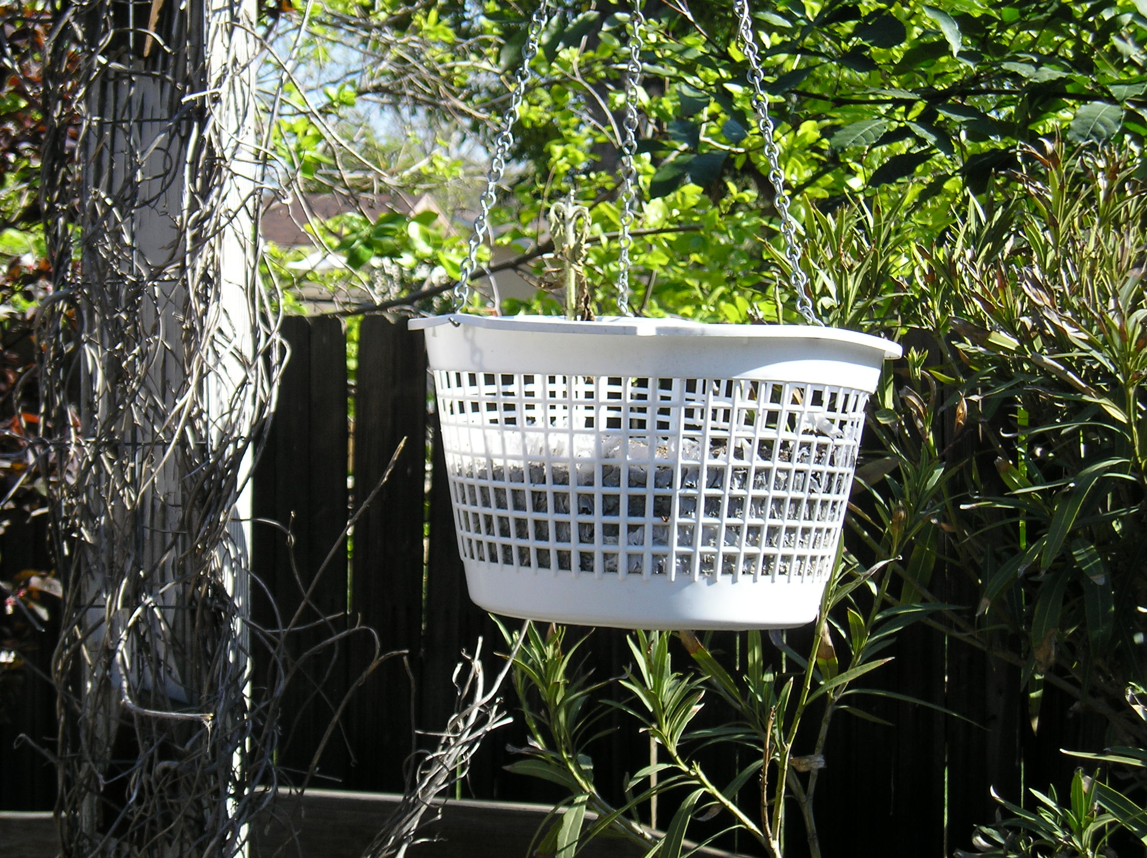 Make Virtually Free Hanging Planters/Upside down tomatoes