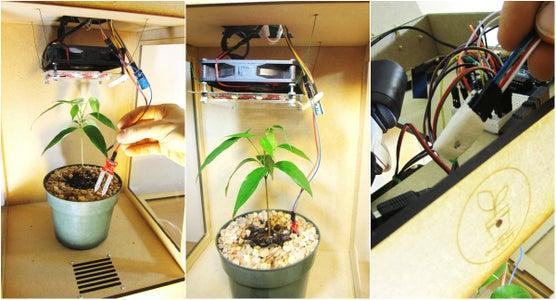 Plant Health Monitor