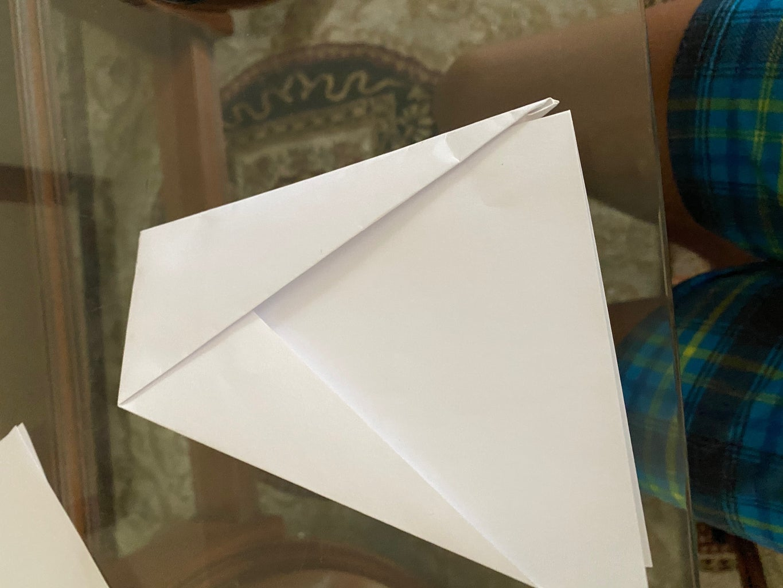 Step 7: Fold It in Half