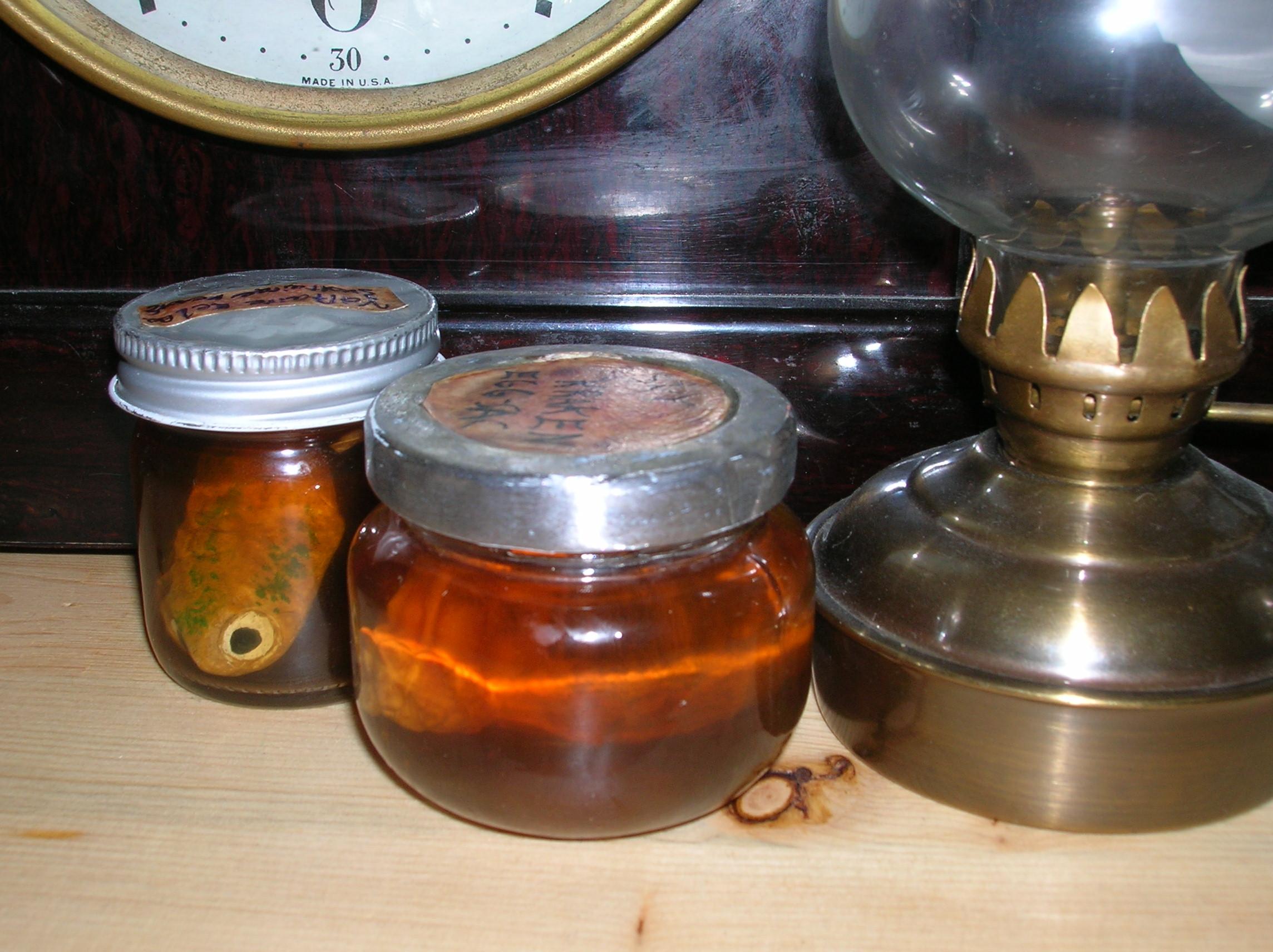 Mad Scientist creatures in jars
