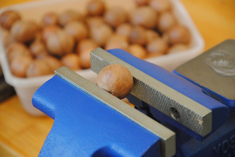 Crack Open Nuts (Even Macadamias!)