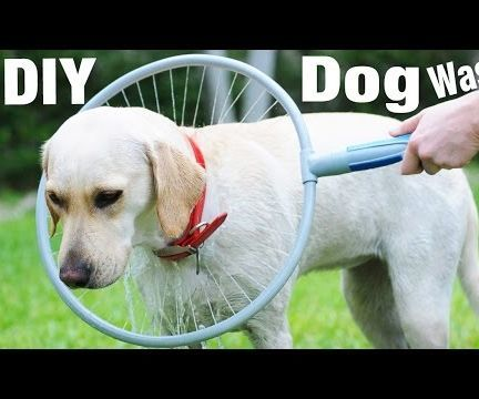 DIY 360 Dog Wash Ring for Your Pet !