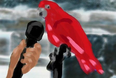 Teach Your Bird to Talk