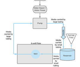 Peristaltic Pump and Perfusion Bioreactor