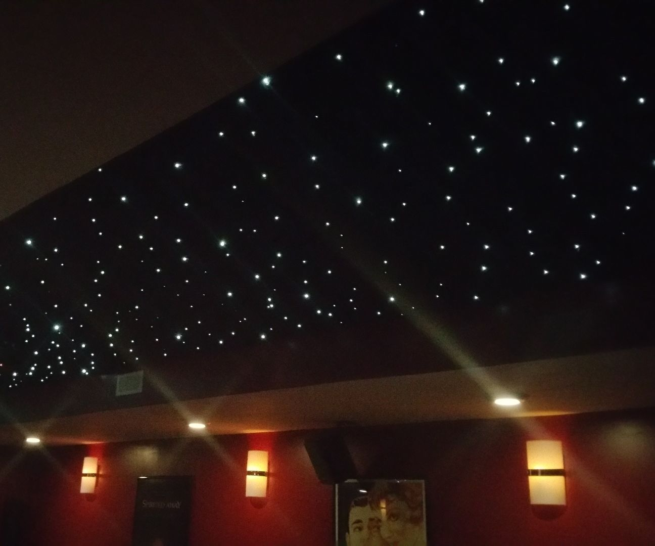 Fiber Optic Panel Star Ceiling