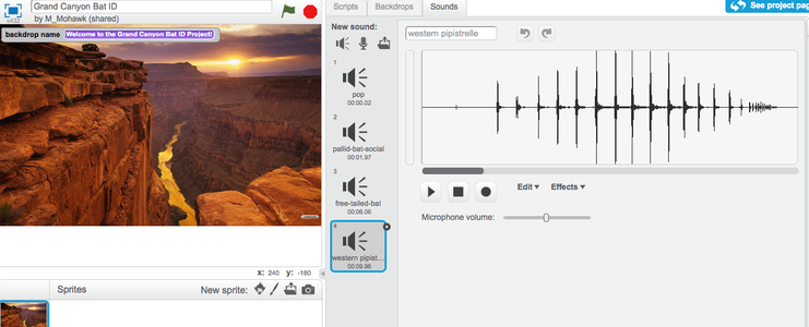 Find .wav Files for Each of Your Animals and Edit Them With Scratch.