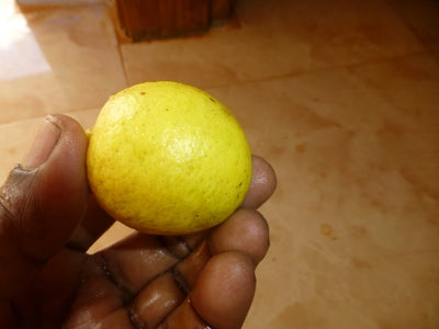 Add Lime Juice