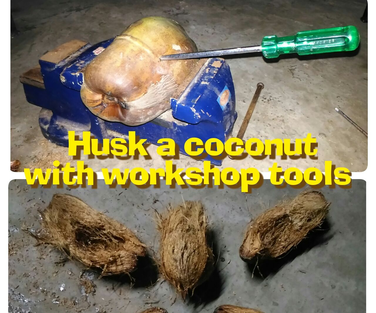 Husk a coconut with workshop tools