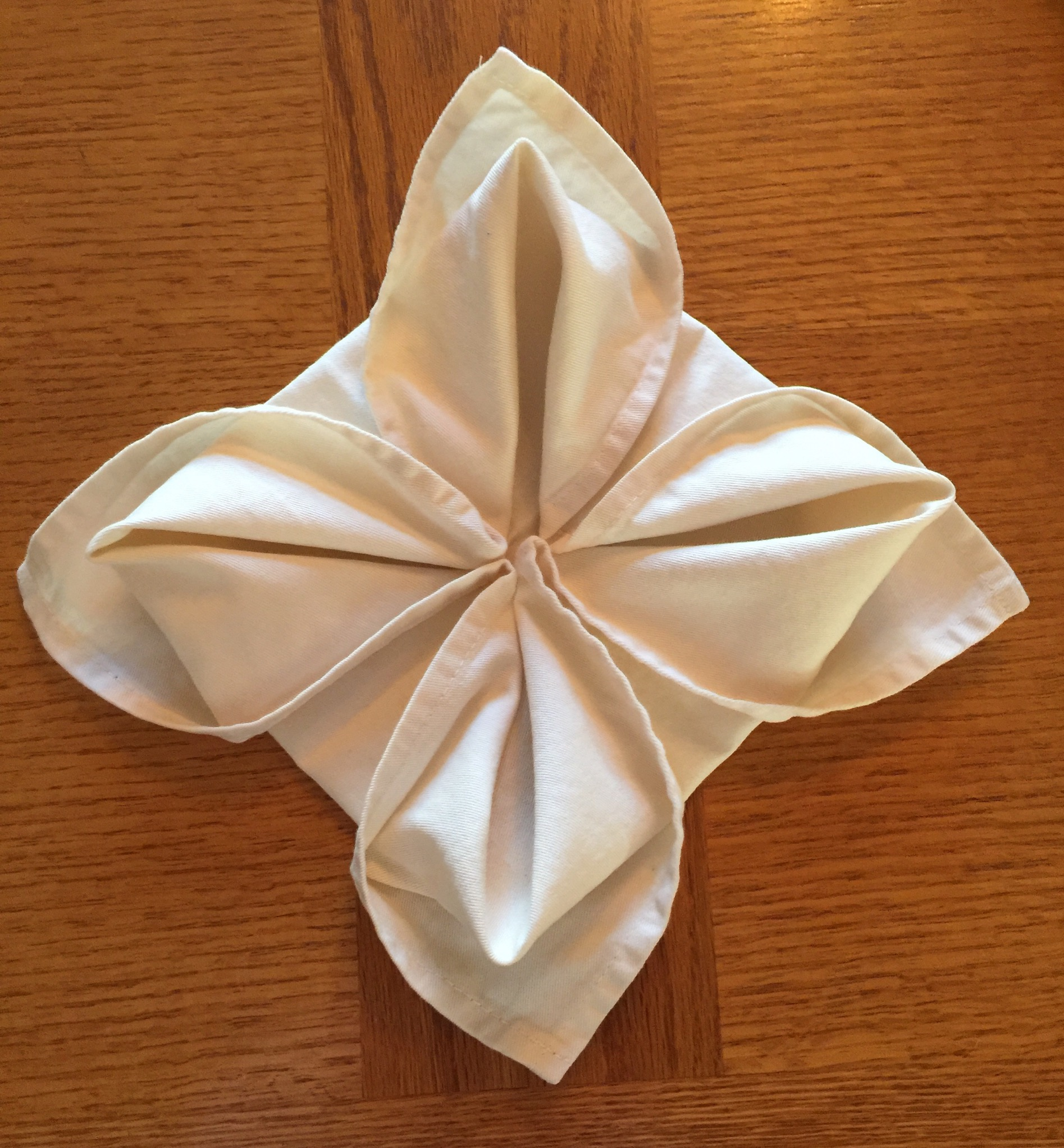 Napkin Folding Flower 9 Steps With Pictures Instructables