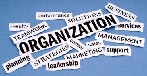Organization Is the Half Life