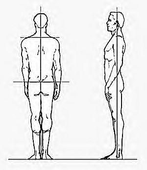 Posture Sensor