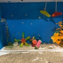 Marine Ecosystem Made From Candy