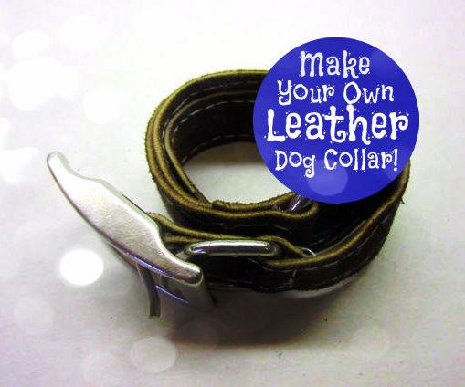 Make a Leather Dog Collar!