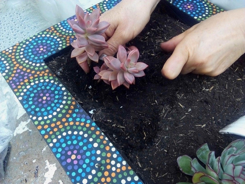 Planting Technique