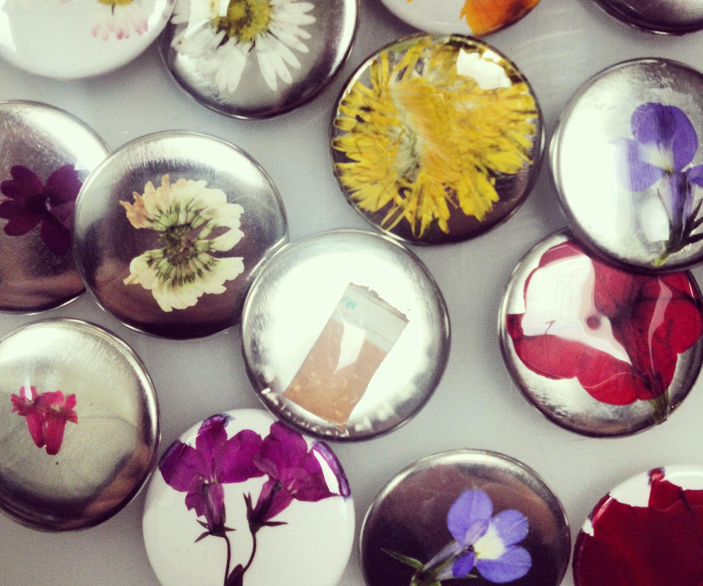 Found Flaura Buttons