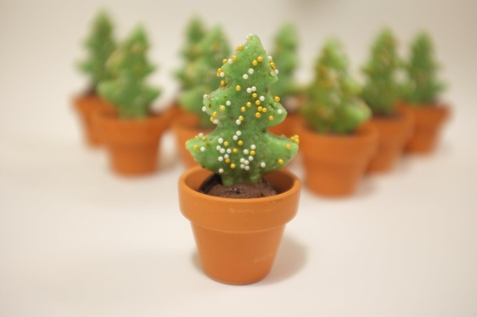Plant Tree Into Soil