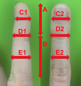Step 1: Measure Your Finger