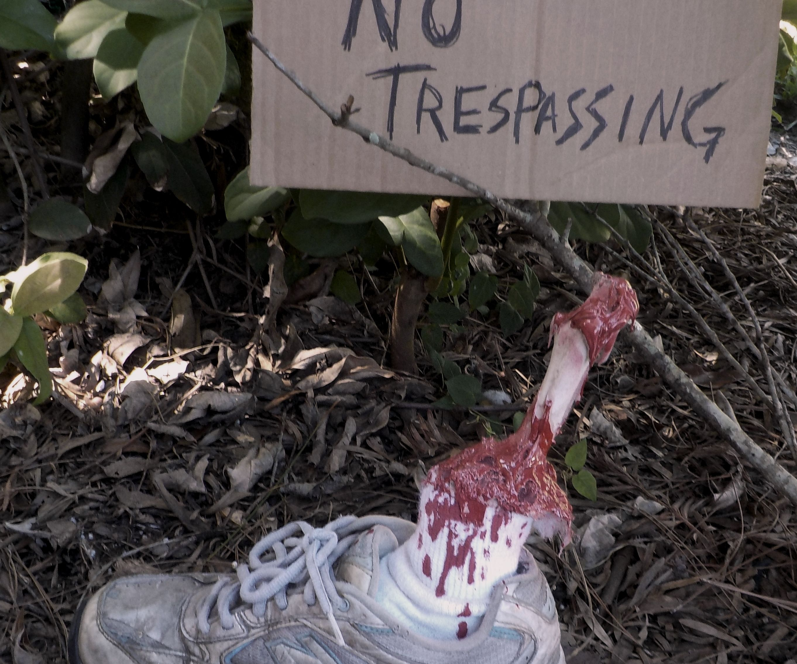 "Halloween ""Severed Leg"" Prop"