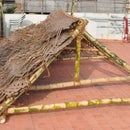 Build a cabana