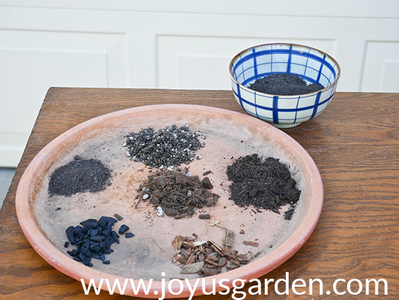 This Is the Proven Mix I Use for Repotting Peperomias: